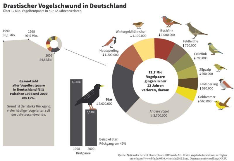 Massives Vogelsterben in Deutschland