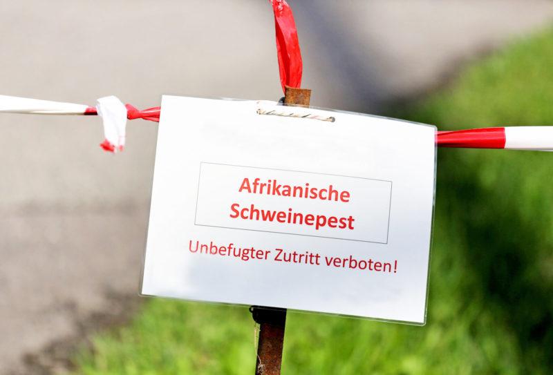 asp in brandenburg