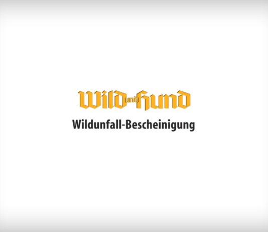 Downloads Archive Wild Und Hund