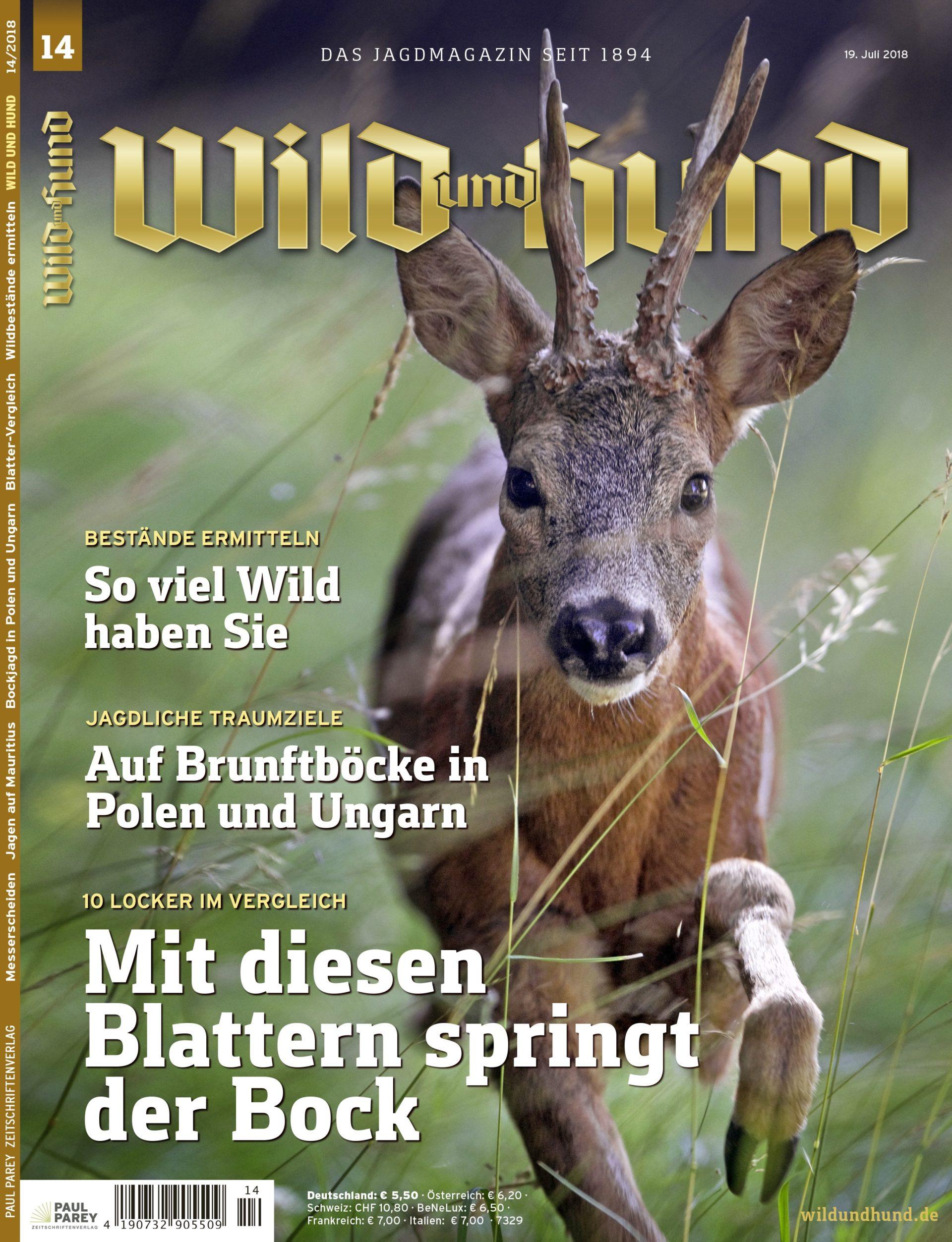 Wild und hund partnersuche