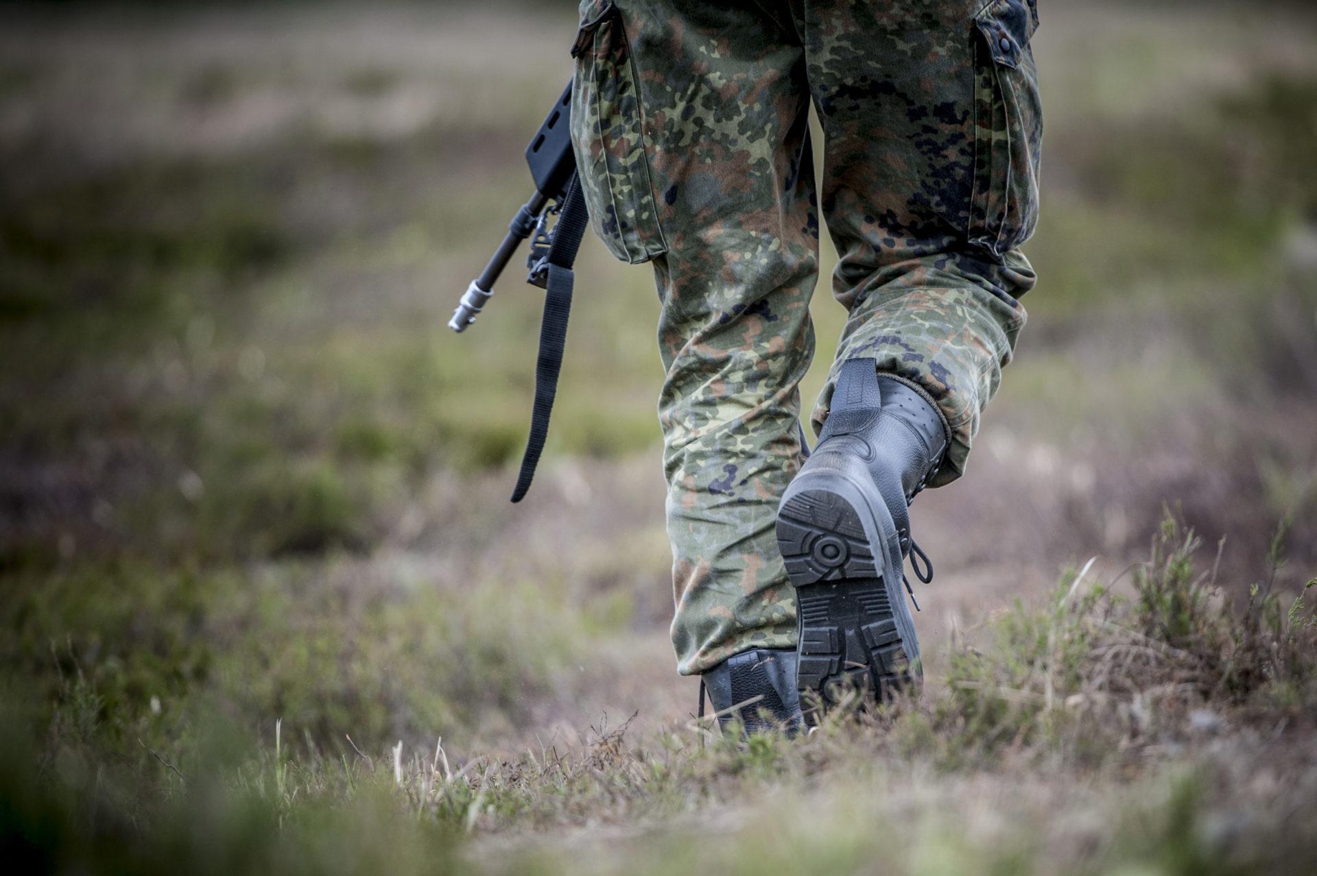 ASP in Belgien: Soldaten Schuld an Seuchenausbruch? - WILD UND HUND