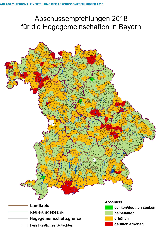 Bayern: Ministerin Kaniber will Abschuss im Bergwald erhöhen