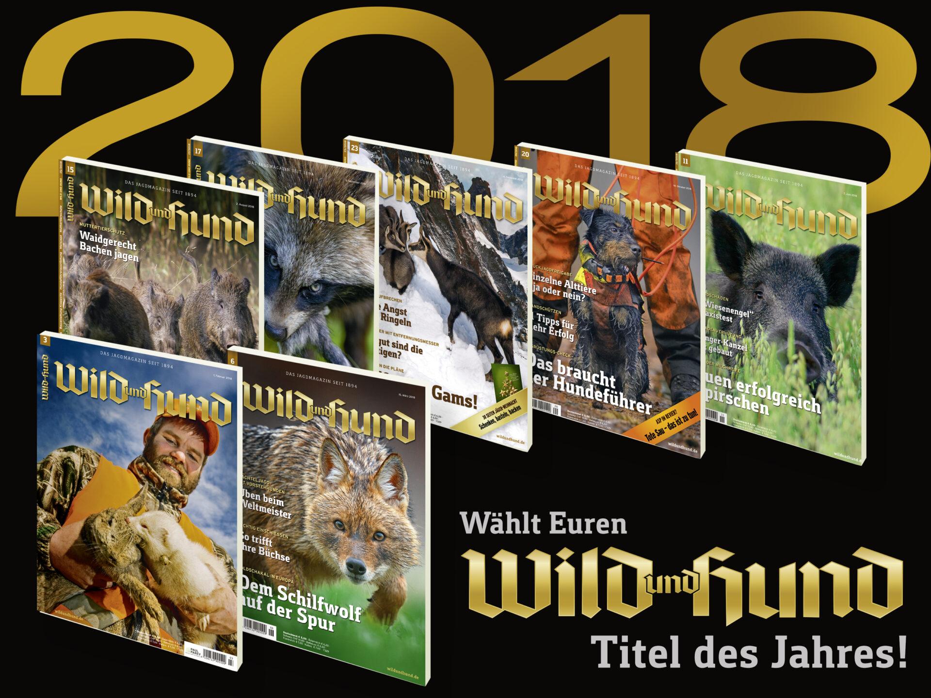 9dc93ca4758e09 WILD UND HUND - Titelbild des Jahres 2018 - WILD UND HUND