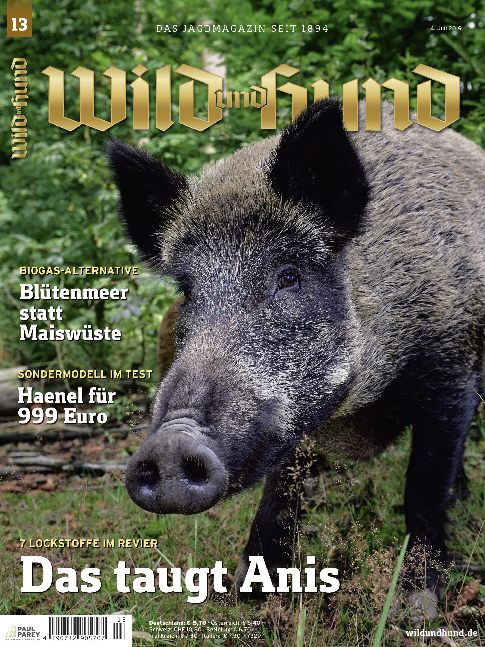 736d67417dc61b Heftvorschau 13/2019 - WILD UND HUND