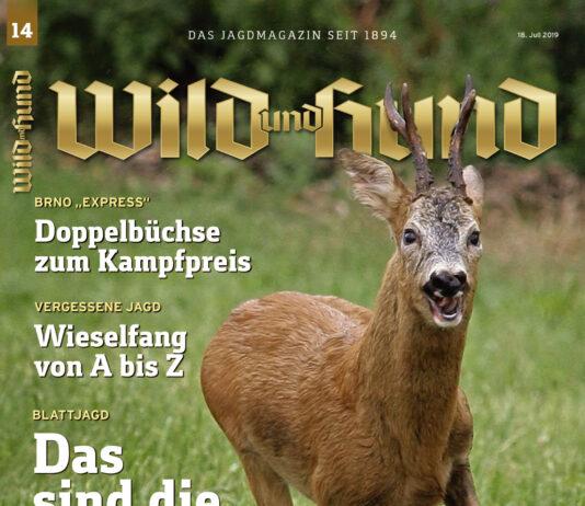 61664e770a4d34 WILD UND HUND Jagdmagazin Archive - WILD UND HUND