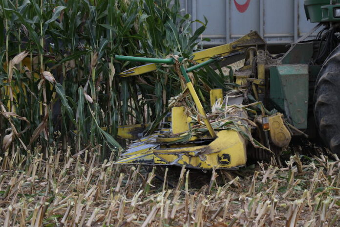 Nahaufnahme eines Maishäckslers. Bei Erntearbeiten mit solch einer Maschine wurde ein Wolf verletzt
